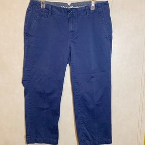 🎃Eddie Bauer specially dyed pants SIZE 8
